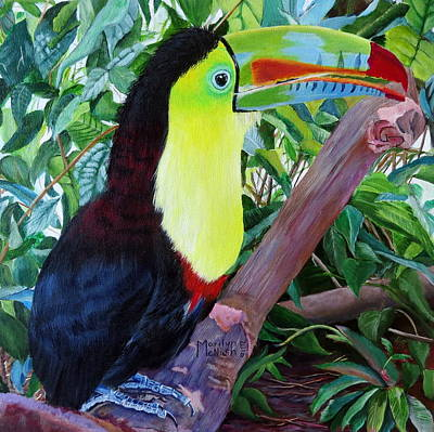 Toucan Portrait 2 Poster by Marilyn McNish