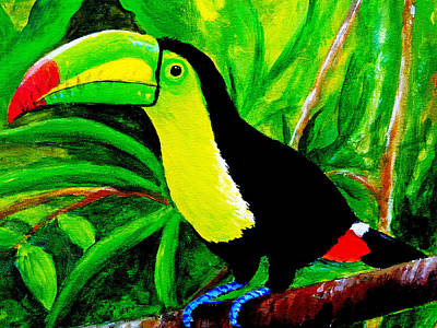 Toucan Sam Poster by Anne Marie Brown
