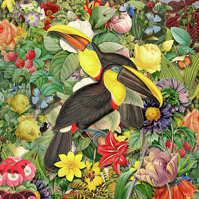 Toucans 2 Poster by Gary Grayson