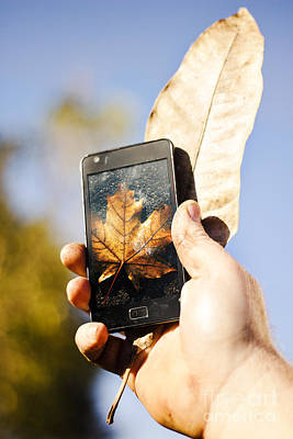 Tourist Man Holding Autumn Leaf And Mobile Phone Poster by Jorgo Photography - Wall Art Gallery