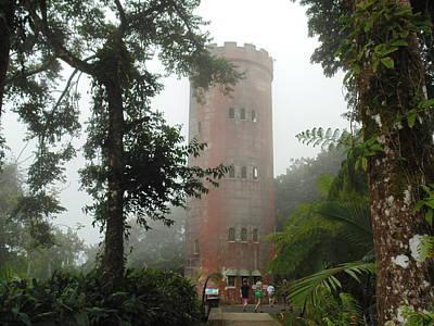 Yokahu Tower In Rainforest Poster