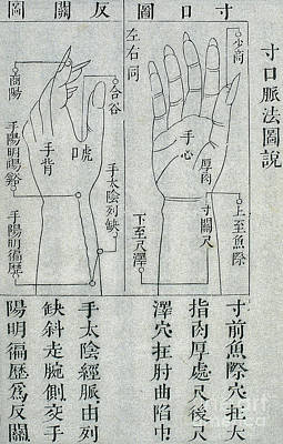 Traditional Chinese Medicine, Cunkou Poster