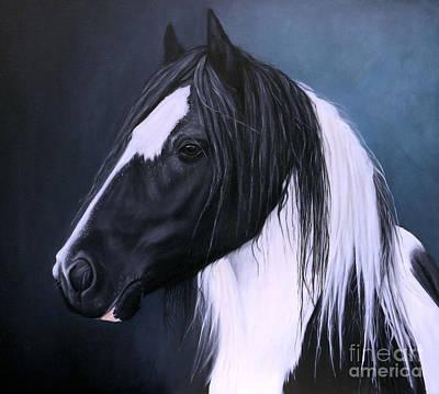 Traditional Gypsy Stallion Poster by Caroline Collinson