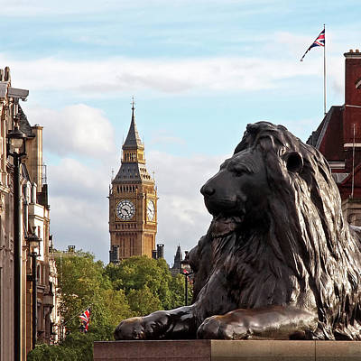 Trafalgar Square Lion With Big Ben Poster by Gill Billington