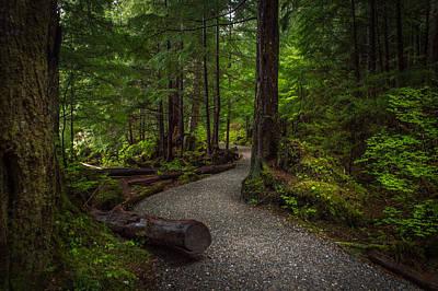 Trail Around Ward Lake Ketchikan Alaska Poster