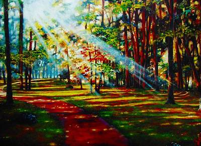 Trails Of Light Poster by Emery Franklin