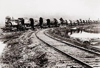 Train Of Huge Redwood Logs Poster by Everett