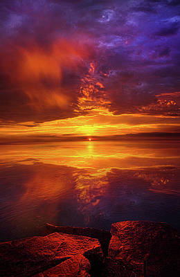 Tranquil Oasis Poster by Phil Koch
