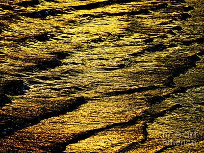Meditative Tranquil Sunlit Water Poster by Carol F Austin