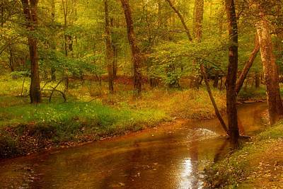 Tranquility Stream - Allaire State Park Poster by Angie Tirado