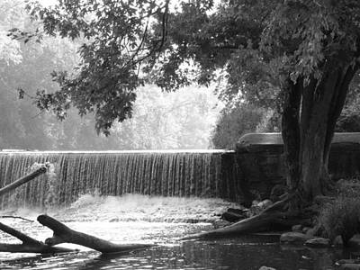 Tree And Dam Poster by Michael L Kimble