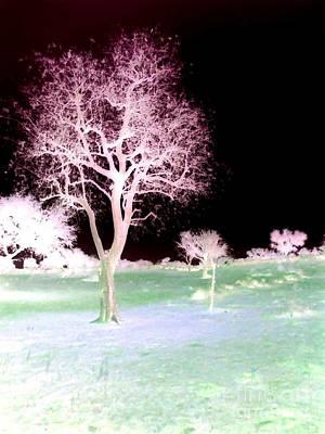 Tree Art  Poster