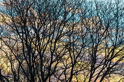 Poster featuring the photograph Tree Branches And Colorful Clouds by James BO Insogna