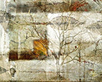 Tree Deconstructed 1 Poster by Lynda Payton