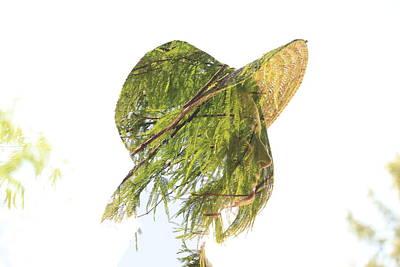 Tree Hat Poster