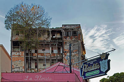 Poster featuring the photograph Tree In Building Over La Floridita Havana Cuba by Charles Harden