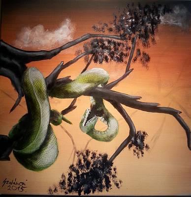 Tree Python In The Sunset Poster by Judit Szalanczi