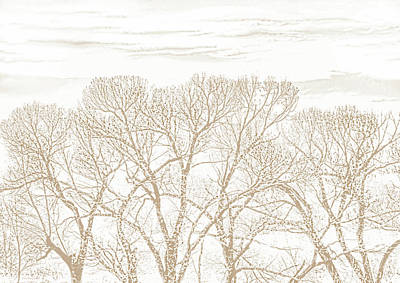 Poster featuring the photograph Trees Silhouette Brown by Jennie Marie Schell