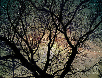 Poster featuring the photograph Tree Silhouette With Stars. by Yulia Kazansky