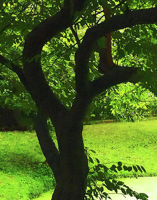 Tree Trunk Green Poster