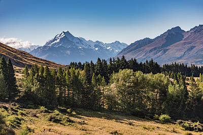 Poster featuring the photograph Tree View Of Mt Cook Aoraki by Gary Eason