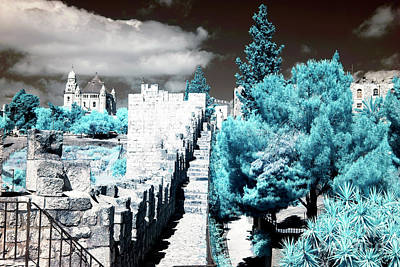 Trees Along The Ramparts Poster