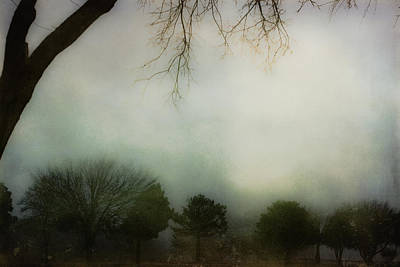Trees In The Mist Poster by Jill Smith