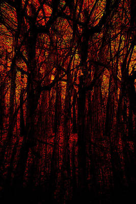 Trees On Fire Poster by Robert Harshman