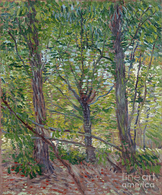 Trees Poster by Van Gogh