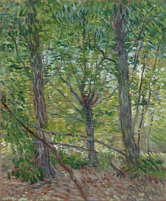 Trees Poster by Vincent van Gogh