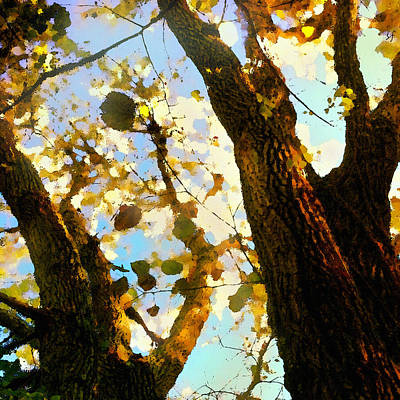 Poster featuring the digital art Treetop Abstract-look Up A Tree by Shelli Fitzpatrick