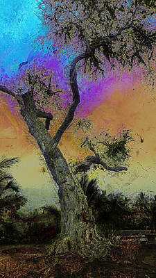Poster featuring the photograph Trembling Tree by Lori Seaman