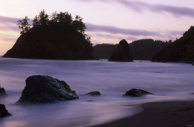 Trinidad State Beach Poster by Soli Deo Gloria Wilderness And Wildlife Photography