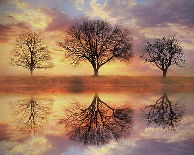 Trio Of Trees Poster by Lori Deiter
