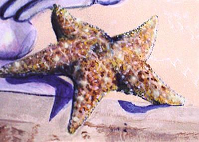 Trompe L'oeil Star Fish Poster