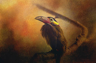Tropical Bird Poster by Maria Angelica Maira