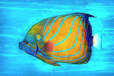 Tropical Fish Painted Poster