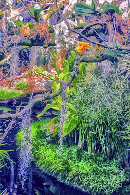Tropical Garden Poster