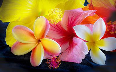 Tropical Melange Poster