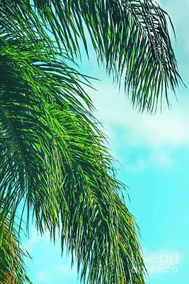 Tropical Palms Maui Hawaii Poster by Sharon Mau