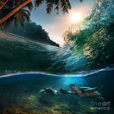 Tropical Paradise Template With Sunlight. Ocean Surfing Wave Breaking And Two Big Green Turtles Divi Poster by Caio Caldas