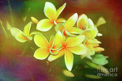 Poster featuring the photograph Tropical Plumeria Art By Kaye Menner by Kaye Menner