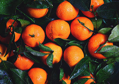 Tropical Poncan Oranges Poster