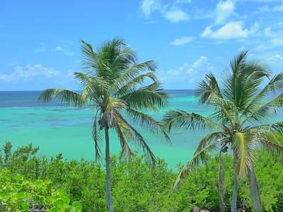 Tropical Splendor Poster
