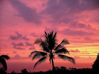 Tropical Sunset Poster by Karen Nicholson