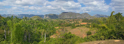 Tropical View Of The Valle De Vinales Poster by Panoramic Images