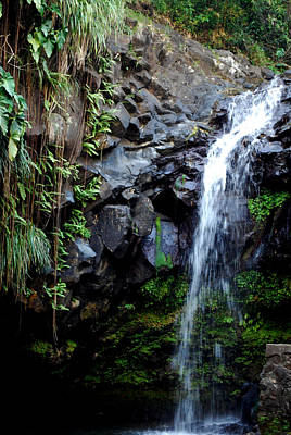 Poster featuring the photograph Tropical Waterfall by Gary Wonning