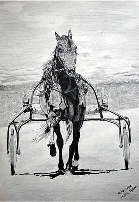 Poster featuring the drawing Trotter by Melita Safran
