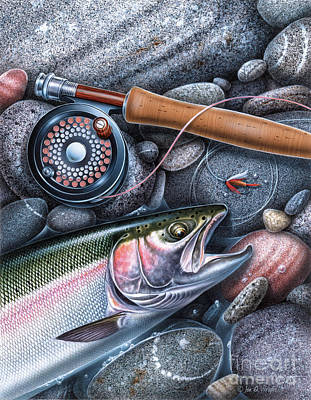 Trout Reel On Rocks Poster