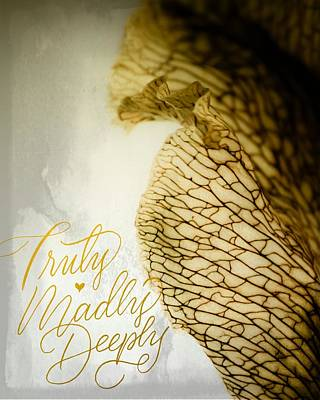 Poster featuring the photograph Truly Madly Deeply by Bobby Villapando